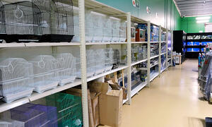 Pets Store Shelving